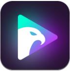 光鹰视频app官网版下载v1.0.5最新版